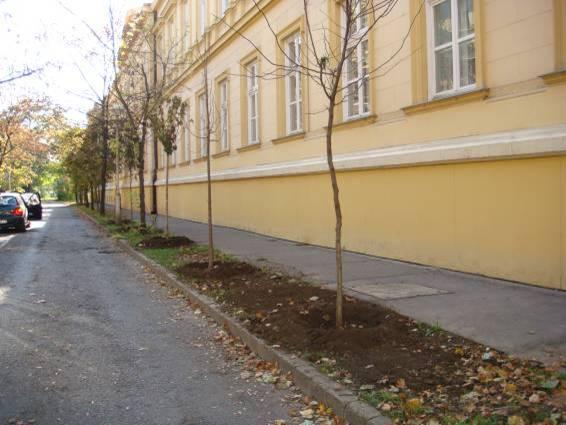 UFS Szolnok7